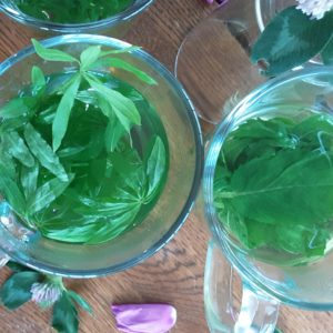 sweet woordruff and apple mint herbal iced tea