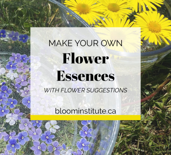 how to make flower essences