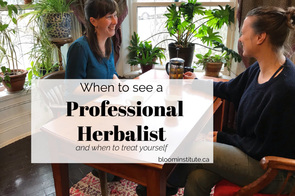 professional herbalist cover