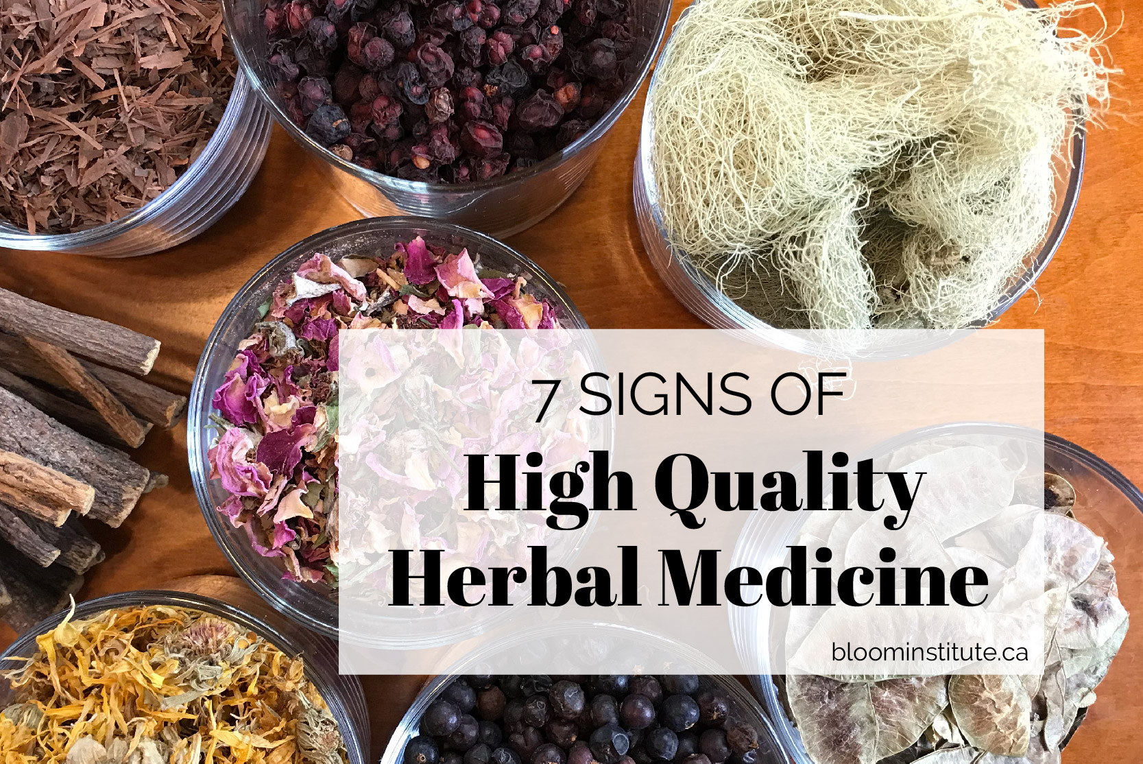 high quality herbs cover