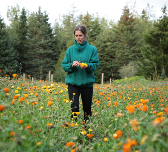 the author in a meadow of California poppies